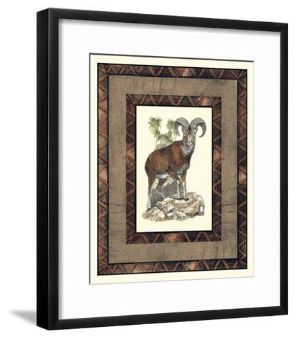 Rustic Big Horn-Vision Studio-Framed Art Print
