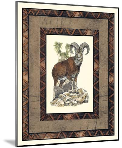 Rustic Big Horn-Vision Studio-Mounted Art Print