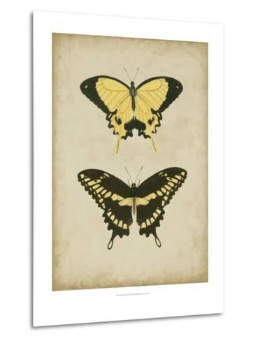 Antique Butterfly Pair I-Vision Studio-Metal Print