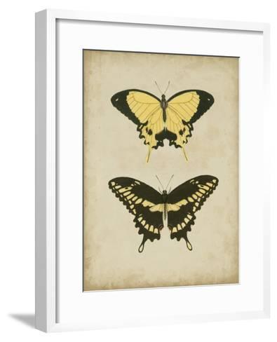 Antique Butterfly Pair I-Vision Studio-Framed Art Print