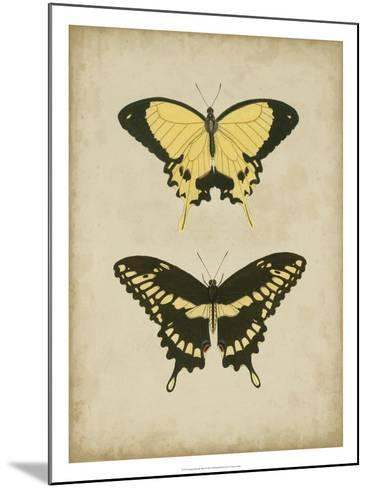 Antique Butterfly Pair I-Vision Studio-Mounted Art Print