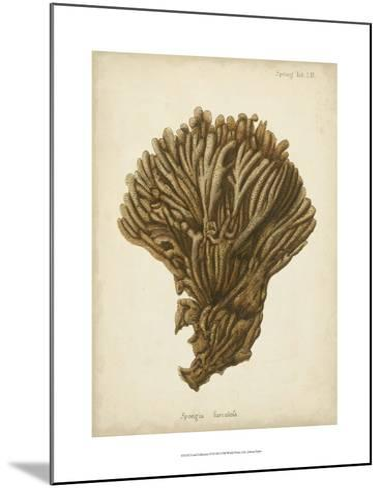 Coral Collection VI-Johann Esper-Mounted Art Print