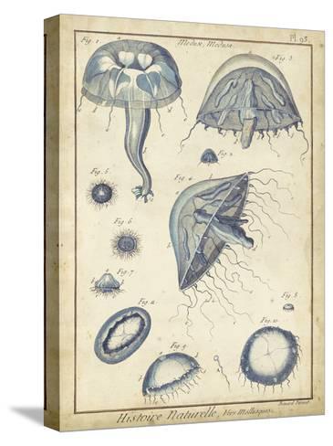 Lamarck Medusa I- Lamarck-Stretched Canvas Print