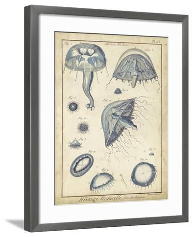 Lamarck Medusa I- Lamarck-Framed Art Print