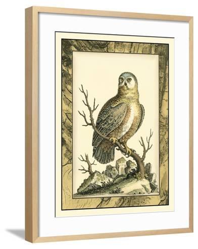Majestic Perch I-Vision Studio-Framed Art Print