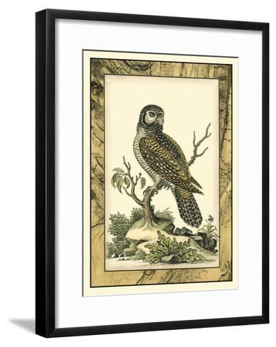 Majestic Perch III-Vision Studio-Framed Art Print