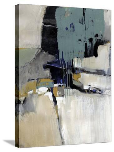 Fluidity I-Tim OToole-Stretched Canvas Print