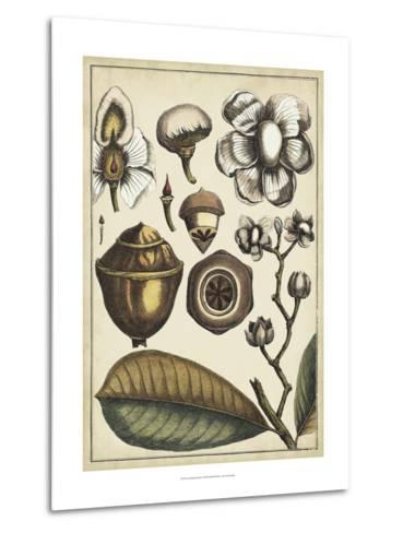 Ivory Botanical Study VI-Vision Studio-Metal Print