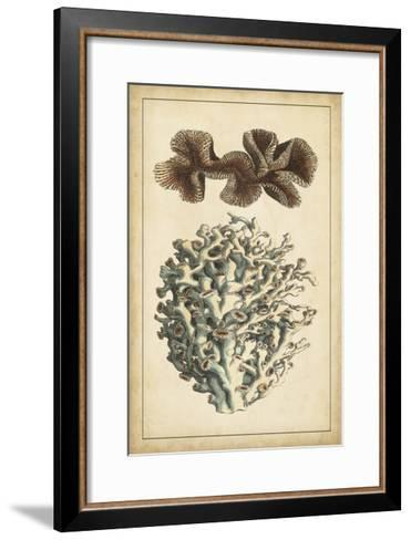 Coral Companions II-Vision Studio-Framed Art Print
