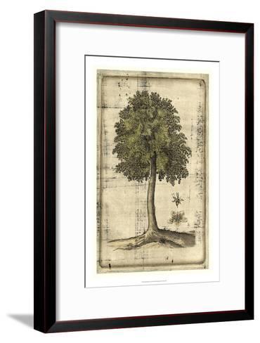Fruitful Realm II-Vision Studio-Framed Art Print