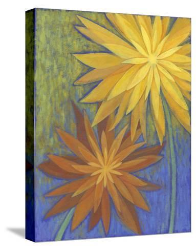Floral Burst II-Megan Meagher-Stretched Canvas Print