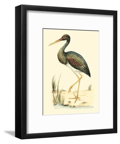 Water Birds II-Meyer H^l^-Framed Art Print