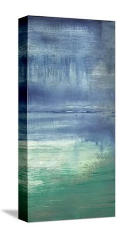Blue Bayou II-Jennifer Goldberger-Stretched Canvas Print