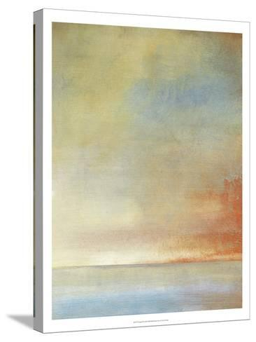 Tranquil II-Tim O'toole-Stretched Canvas Print