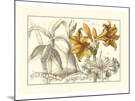 Embellished Arena Botanical II-Arena-Mounted Art Print