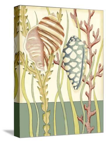 Shell Season II-Chariklia Zarris-Stretched Canvas Print