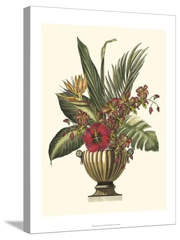 Tropical Foliage in Urn I-Vision Studio-Stretched Canvas Print