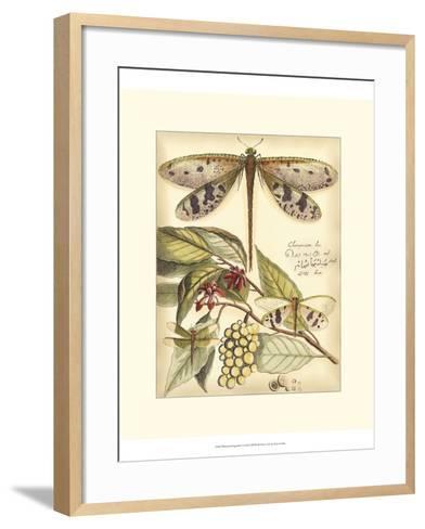 Whimsical Dragonflies I-Vision Studio-Framed Art Print