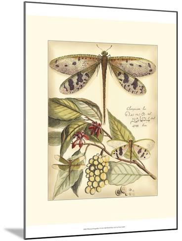 Whimsical Dragonflies I-Vision Studio-Mounted Art Print