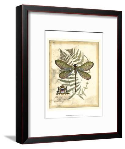 Regal Dragonfly II-Vision Studio-Framed Art Print