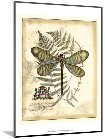 Regal Dragonfly II-Vision Studio-Mounted Art Print
