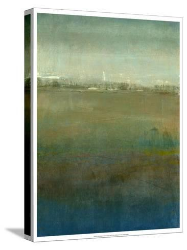 Atmospheric Field I-Tim O'toole-Stretched Canvas Print