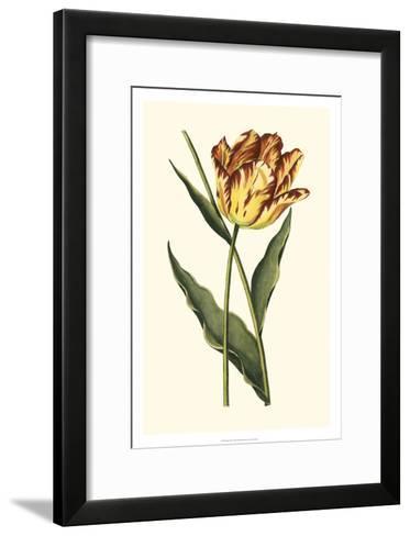 Vintage Tulips I-Vision Studio-Framed Art Print