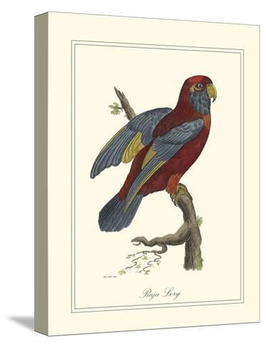 Raja Lory-George Edwards-Stretched Canvas Print