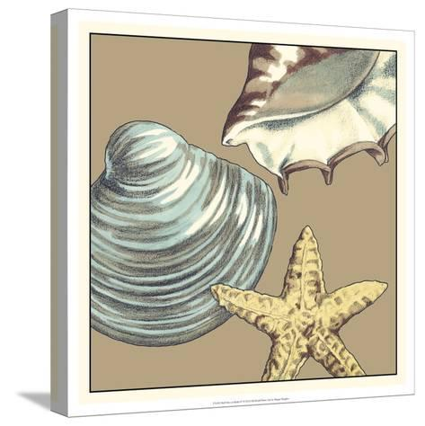 Shell Trio on Khaki IV-Megan Meagher-Stretched Canvas Print