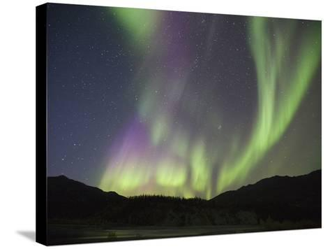 Aurora Borealis, Koyukuk River, Alaska, USA-Hugh Rose-Stretched Canvas Print