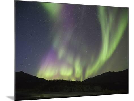 Aurora Borealis, Koyukuk River, Alaska, USA-Hugh Rose-Mounted Photographic Print