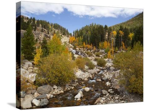 Alluvial Fan, Rocky Mountain National Park, Colorado, USA-Jamie & Judy Wild-Stretched Canvas Print