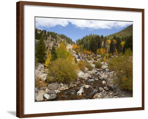 Alluvial Fan, Rocky Mountain National Park, Colorado, USA-Jamie & Judy Wild-Framed Art Print