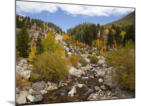 Alluvial Fan, Rocky Mountain National Park, Colorado, USA-Jamie & Judy Wild-Mounted Photographic Print