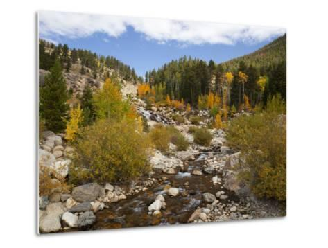 Alluvial Fan, Rocky Mountain National Park, Colorado, USA-Jamie & Judy Wild-Metal Print