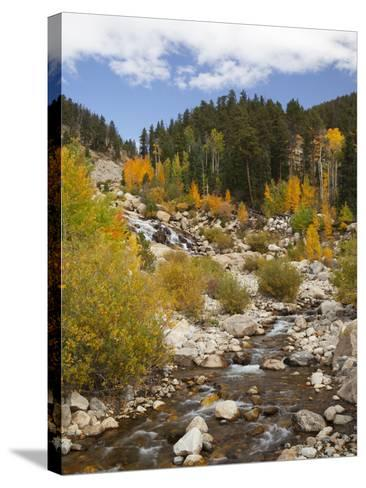 Alluvial Fan, Rocky Mountain National Park, Colorado, USA-Jamie & Judy Wild-Stretched Canvas Print