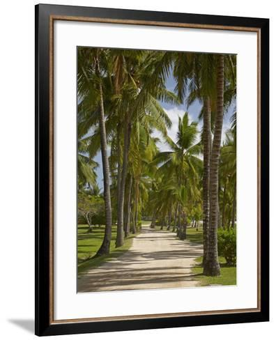 Avenue of Palms, Musket Cove Island Resort, Malolo Lailai Island, Mamanuca Islands, Fiji-David Wall-Framed Art Print