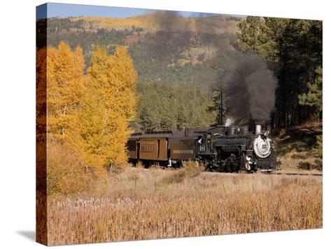 Durango and Silverton Narrow Gauge Railroad, Colorado, USA-Don Grall-Stretched Canvas Print
