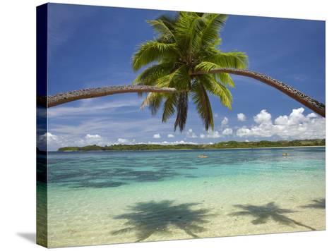 Palm Trees, Shangri-La Fijian Resort, Yanuca Island, Coral Coast, Viti Levu, Fiji, South Pacific-David Wall-Stretched Canvas Print