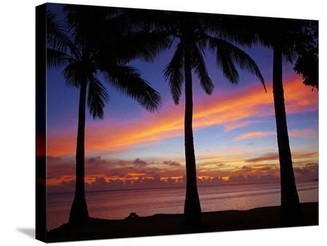 Sunset and Palm Trees, Coral Coast, Viti Levu, Fiji, South Pacific-David Wall-Stretched Canvas Print