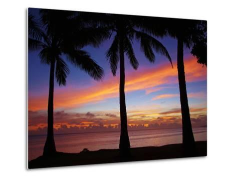 Sunset and Palm Trees, Coral Coast, Viti Levu, Fiji, South Pacific-David Wall-Metal Print