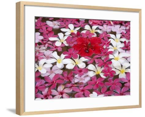 Flower Decoration, Udaipur, Rajasthan, India-Keren Su-Framed Art Print