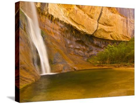 Waterfall, Grand Staircase Escalante National Monument, Utah, USA-Jay O'brien-Stretched Canvas Print
