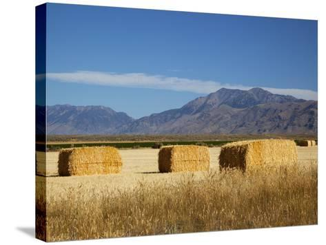 Hay Bales, Butte County, Idaho, USA-Jamie & Judy Wild-Stretched Canvas Print