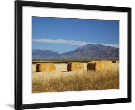 Hay Bales, Butte County, Idaho, USA-Jamie & Judy Wild-Framed Art Print
