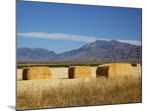 Hay Bales, Butte County, Idaho, USA-Jamie & Judy Wild-Mounted Photographic Print