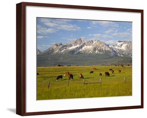 Grazing Cattle, Sawtooth National Recreation Area, Idaho, USA-Jamie & Judy Wild-Framed Art Print