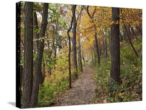 Trail to Great Bear and Little Bear Mound, Effigy Mounds National Monument, Iowa, USA-Jamie & Judy Wild-Stretched Canvas Print
