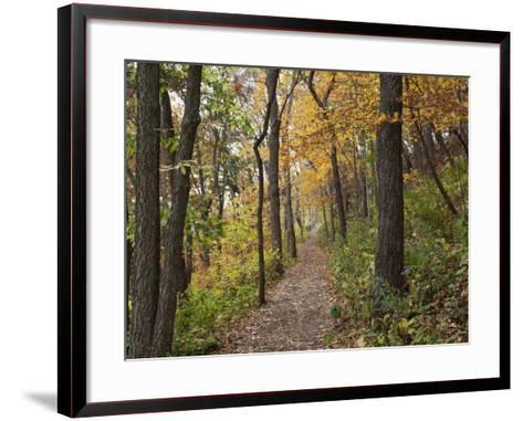 Trail to Great Bear and Little Bear Mound, Effigy Mounds National Monument, Iowa, USA-Jamie & Judy Wild-Framed Art Print