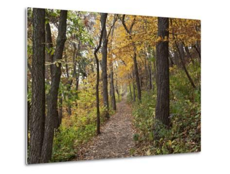 Trail to Great Bear and Little Bear Mound, Effigy Mounds National Monument, Iowa, USA-Jamie & Judy Wild-Metal Print